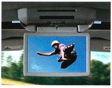 Image of Dvd Rear Seat Video, Overhead System