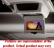 Image of Rear Seat Video (Dvd)