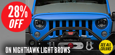 Nighthawk Grilles - NEW LOW PRICE!
