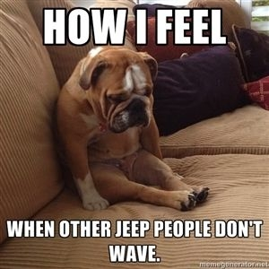 no-jeep-wave-for-me